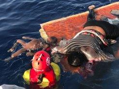 open-arms-bimbo e donna morti su resti barcone